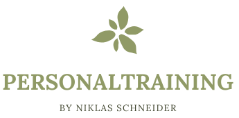 niklas-schneider.com